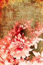 Old grunge vintage postcard with beautiful flower/ Flower Card/ holidays card