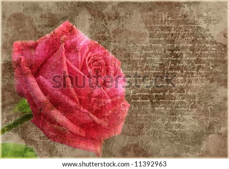 Old grunge vintage postcard with beautiful pink rose - stock photo