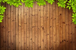Old grunge Wood Texture with leaves use for background