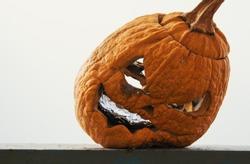 Old Halloween rotten pumpkin - after holidays concept