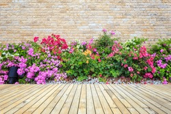 Old hardwood decking or flooring and green plant in garden decorative