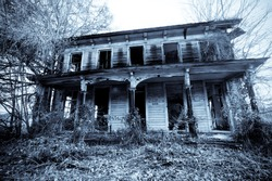 Old haunted house in the woods