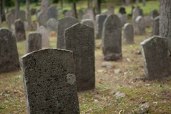 Old headstones in a rural cemetery
