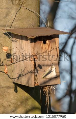 Old homemade bird nesting box hangs broken on a tree #1315077950