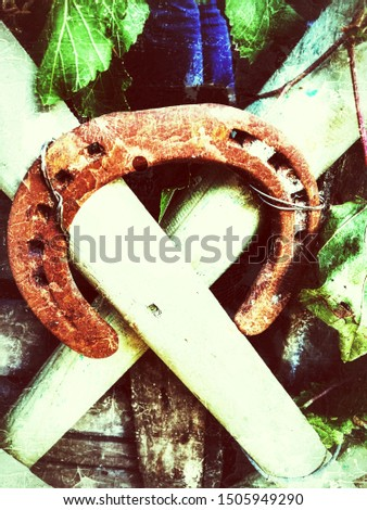 old horseshoe  for a horse formed of a narrow band of iron in the form of an extended circular arc and secured to the a wooden fence decorated with vine leaves,horseshoe for luck