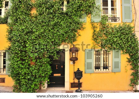 old house wall with door, windows and plants in Southern France