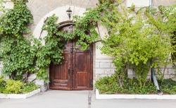 Old house wall with wooden door and green vine as a decorative plant, background photo texture