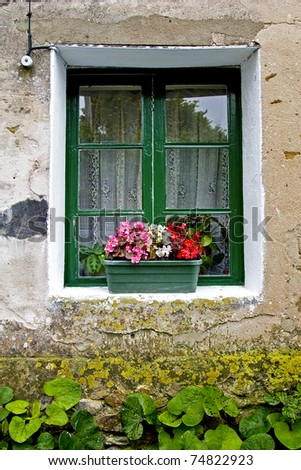 Old house window with flowers