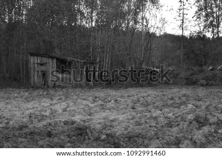 Old hovel on forest edge #1092991460