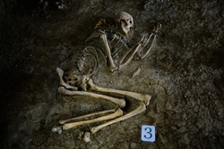 Old human skeleton in ancient tomb at archaeological excavation.