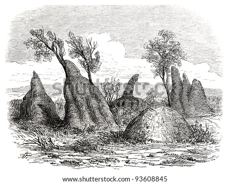 """Old illustration depicting termite hives in South Africa in 1880, drawn by J. Vanione in Emil Holub's """"Seven Years in South Africa"""", published in Vienna, 1881"""
