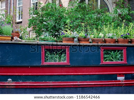 Old inactive houseboat with plants and flowers inside out.