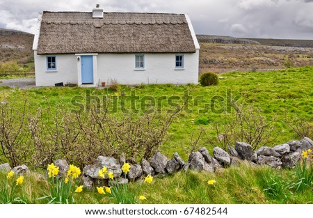 old irish rural cottage in a farm field