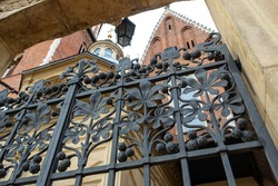 Old iron lattice with chestnut ornament in Krakow, Poland