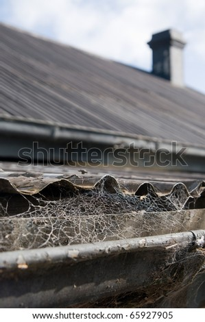Old Iron roof top with web covered gutters