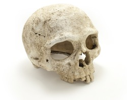 Old jawless Human Skull isolated against white background. Anatomy illustration. Medical image. Sign of death. Symbol of dying. Ceramic.