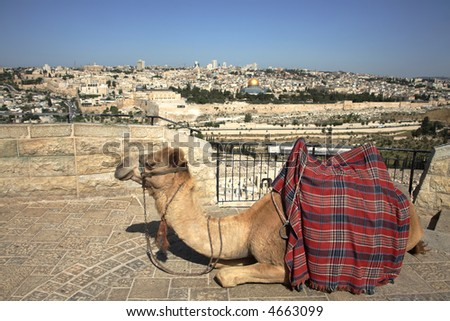 Old Jerusalem & Mount of Olives