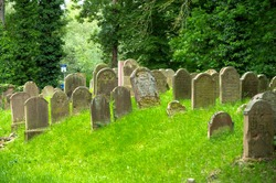 old Jewish cemetery among green spaces