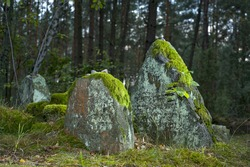 Old Jewish cemetery in the forest. The cemetery is located in Poland. There are inscriptions in Yiddish on the stones.