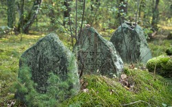 Old Jewish cemetery in the forest. The cemetery is located in Poland. Unreadable Yiddish text inscriptions on the stones.