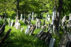 Old Jewish Cemetery, stone tombstones, town of Mikulov in the Czech Republic