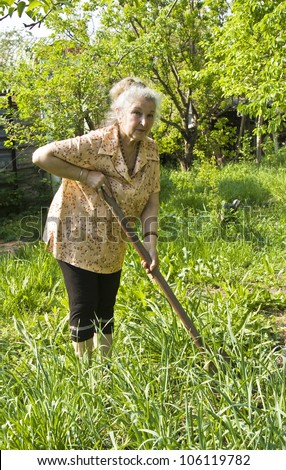 Old lady working in the garden in summer or spring.