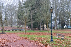 Old Lamp Post and Bench in Deserted Public Park with Autumnal Trees