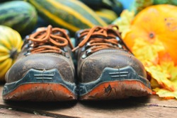 old leather work boots with thick soles on the background of a crop of zucchini and yellow pumpkin. Selective focus on toe of shoes