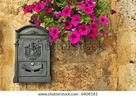 Old-looking mailbox with petunias on rough wall