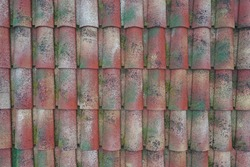 Old-looking mossy modern Italian roof tiles.