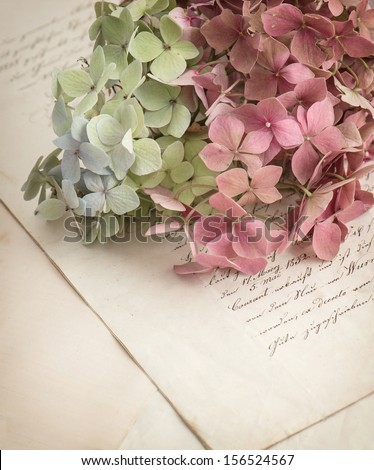 Old Love Letters And Garden Flowers Hydrangea. Romantic Vintage Style Background. Selective Focus