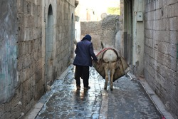 Old man and donkey walking on the street.