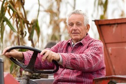 Old man driving tractor on corn field during harvest