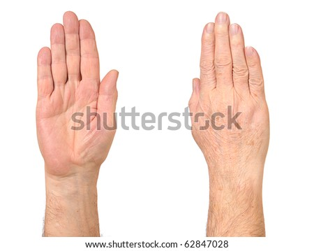 Old man hands isolated on white - stock photo