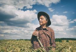 Old man peasant resting in barley field during seasonal works