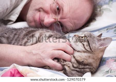 Old man pets a Scottish-straight gray beautiful cat