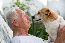 Old man resting in garden and cute dog climb on his chest and kissing him. Pet love concept