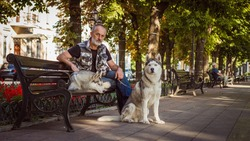Old man sitting on a bench. The bearded man. Walking the dog. Dog sit beside his master. Siberian Husky.