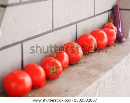 Old market sellers put the vegetable on the windows #1502502887