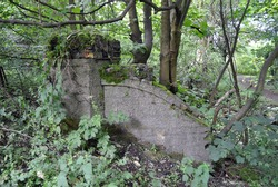 Old Masonry Wall of 18th Century Industrial Ruin in Thick Forest