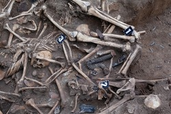 Old mass burial of human remains on the battlefield. war crime. echo of war. mass grave.  With archaeological markers