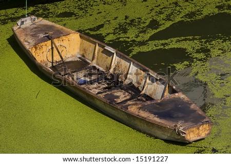old metal boat in green water field