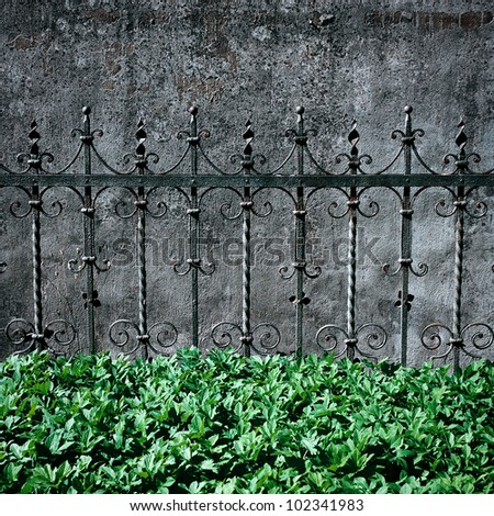 Old metal fence detail, wall and grass