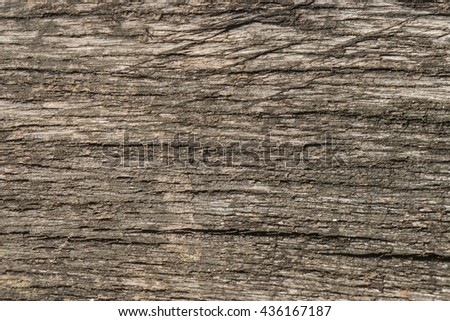 Old natural wooden shabby background close up, old wood background, texture of bark wood use as natural background #436167187