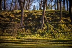 Old oak and linden trees in Arcadia city park in Riga, Latvia, during golden hour in April 2020