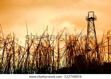 old oil tower and the foreground grass