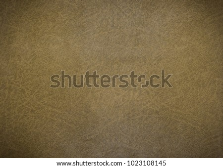 Old olive leather texture closeup and pattern background #1023108145