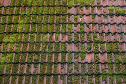 Old orange tiles covered with green moss,  Old rusted red brick roof, Shingles texture, Abstract geometric pattern background, Details of roof top material.