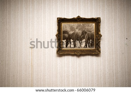 Old ornamented frame on retro grunge wall with the picture of horses in sepia
