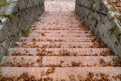Old outdoor staircase in a park covered by autumn orange leaves